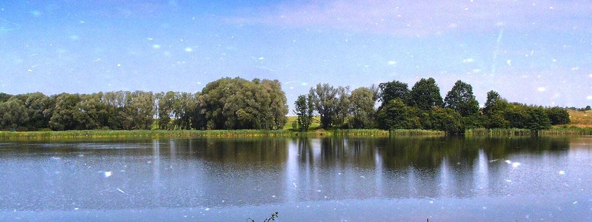 Malý Pavlovický rybník